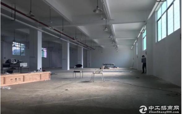 坂田上雪工业区一楼厂房1000平方出租