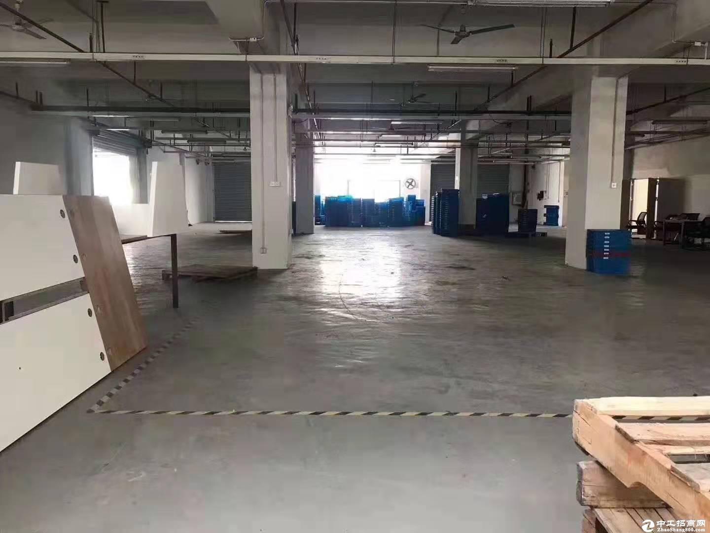 西丽阳光工业区一楼500平仓库厂房招租