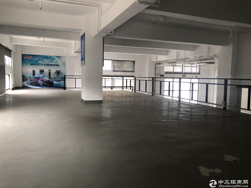 西丽沙河西路边精装修920平米厂房可做电商办公带