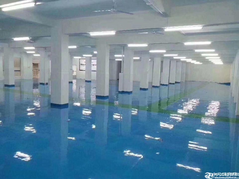 龙华大浪工业园新出精装无尘车间2000平厂房仓库大小可分租
