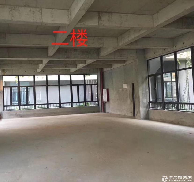 深圳凤岗红本厂房出售,首付5成按揭10年面积大小均有-图2