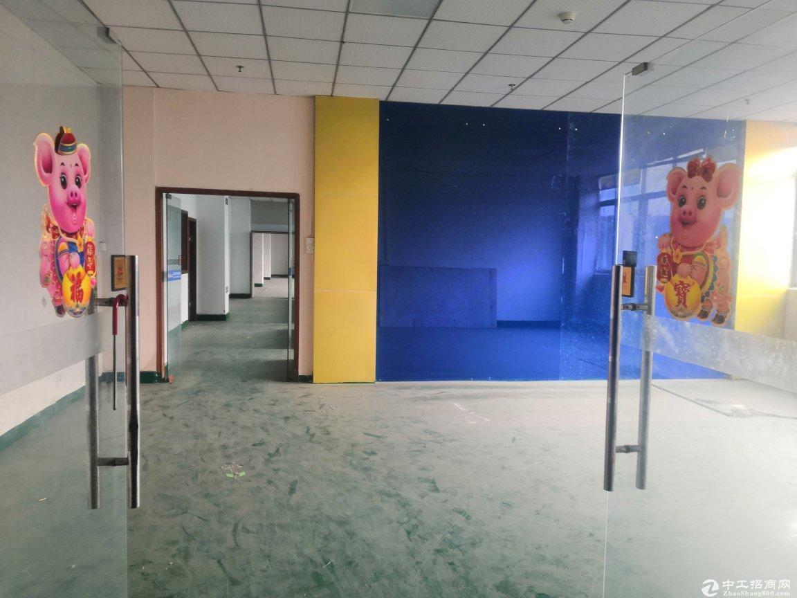 南山西丽茶光地铁口旁精装修办公室600平可分租使用率高