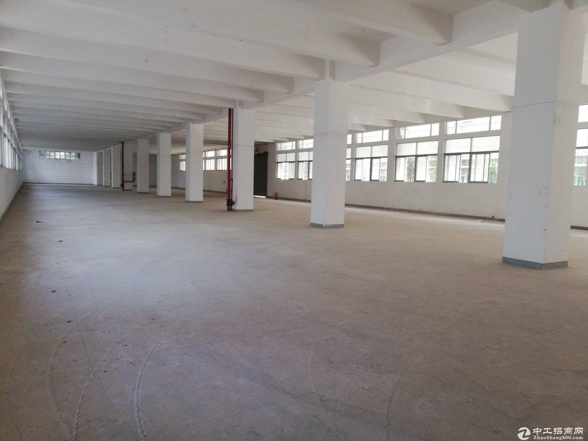 西丽沙河西路一楼1700平层高5米