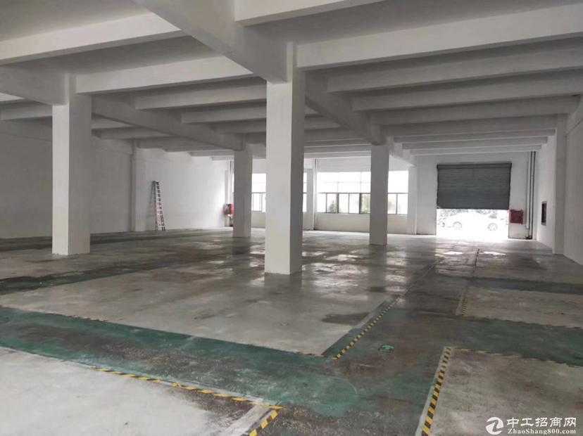 石岩镇原房东一楼1000平方万博app官方下载出租,可以办环评