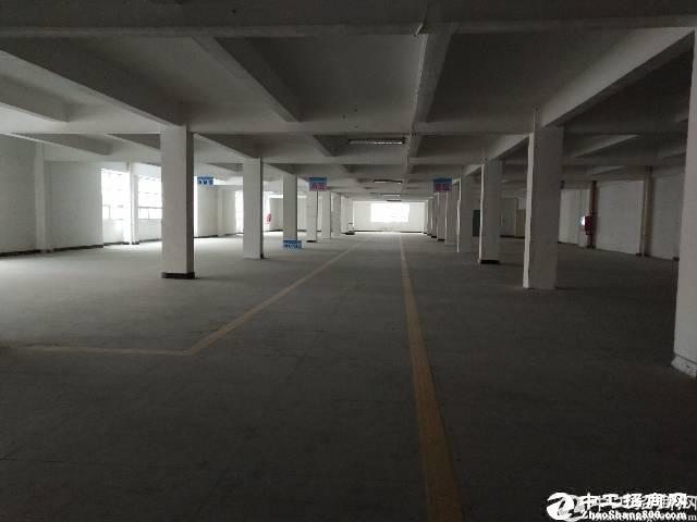 西丽牛城一楼1300平米厂房出租