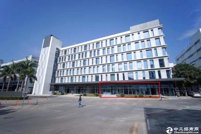 西丽阳光工业区新出一楼1200平方厂房出租,全新落地窗