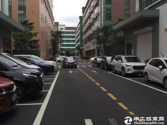 南山区龙珠4路88号金谷创业园仓库办公厂房低价出租