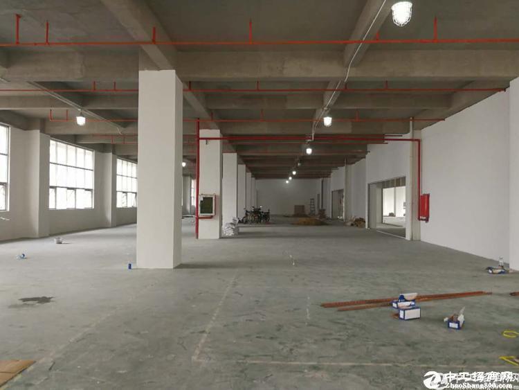 西丽牛成南光高速边700平厂房出租