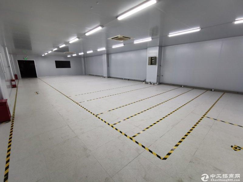 南山西丽天虹700平烘培生产仓储厂房出租