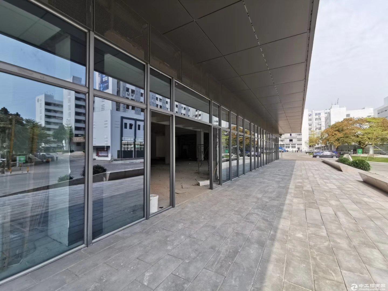 西丽高端大气一楼1200平方,环境优雅,空地大好招工