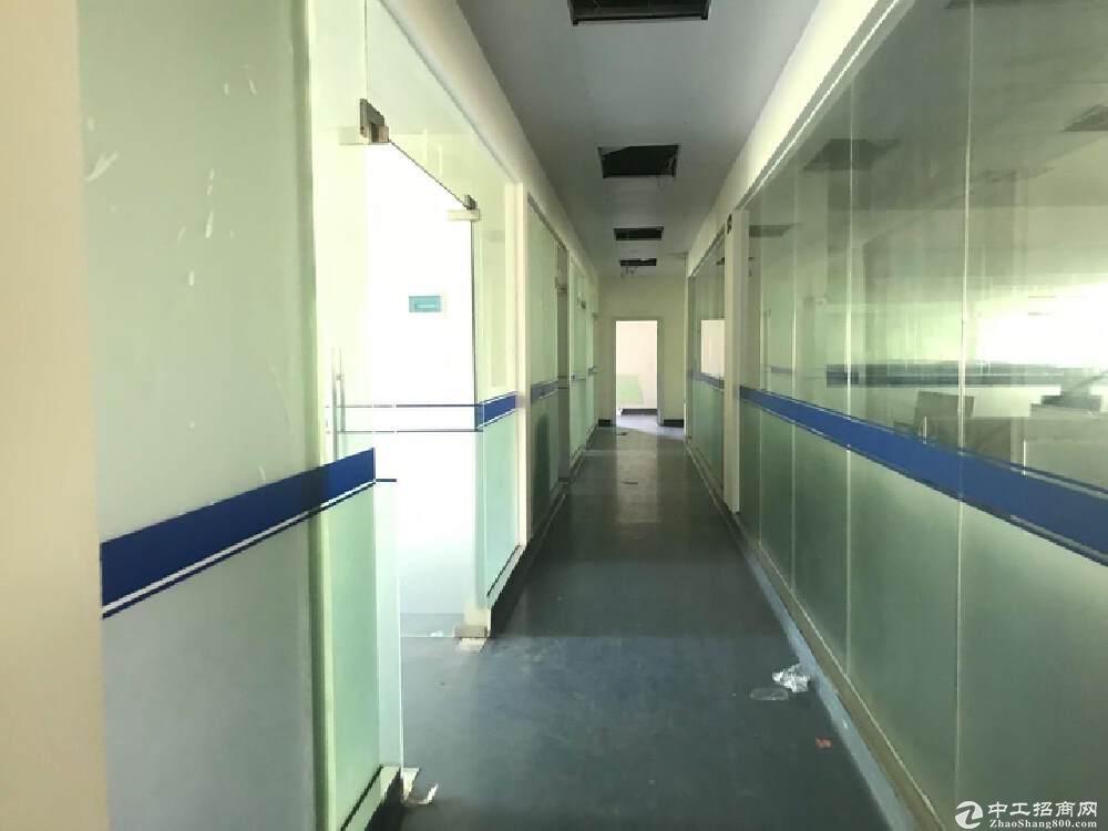 西丽新出楼上1600平精装修高速路口大型工业园厂房出租