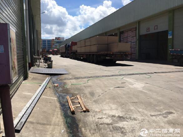 白芒国道附近新出5000平钢构厂房