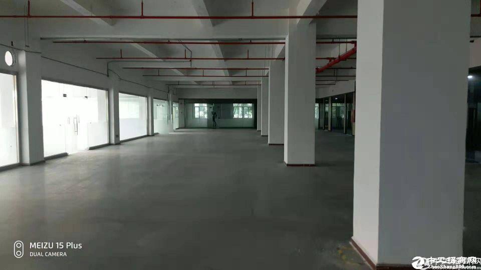 西丽大学城地铁口1500平米厂房出租可做仓库办公