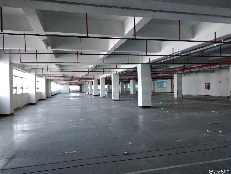 独院厂房招租共12万平方500平起分,一楼厂房仓库分租