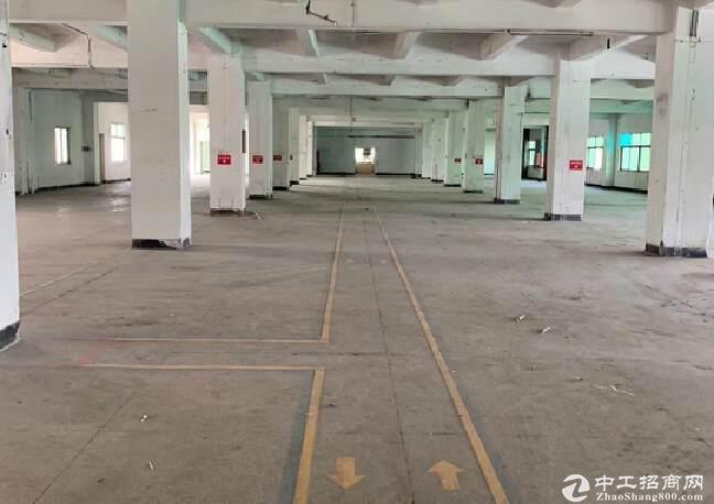 阳光工业区独门独院厂房70000平,大小面积分租