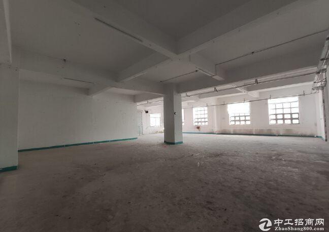 大学城房东红本独院300平厂房仓库出租价格优惠大小可分租