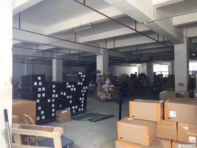 西丽阳光工业区一楼530平仓库厂房招租