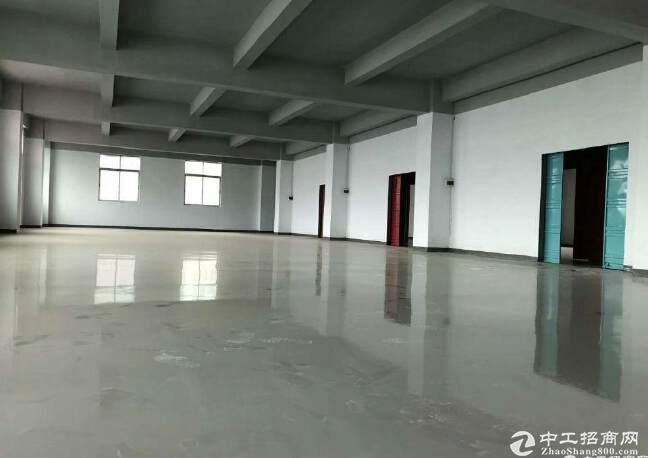 南山精装修厂房仓库250平300平400平500平