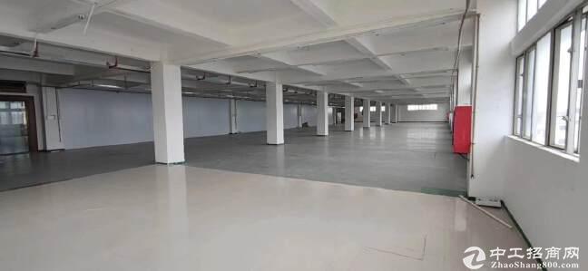 西丽一楼厂房1400招租楼上1600平招租仓库200分租