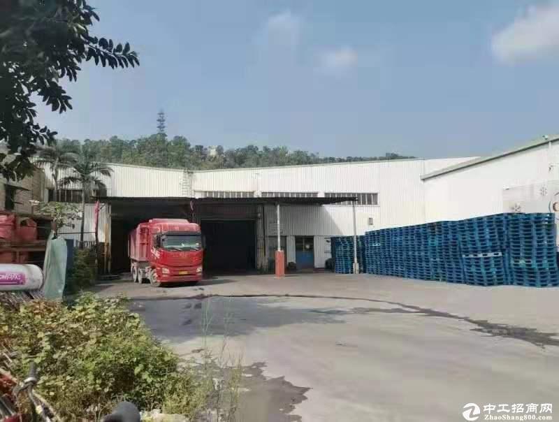 深圳市南山区蛇口物流园 6000平仓库厂房出租