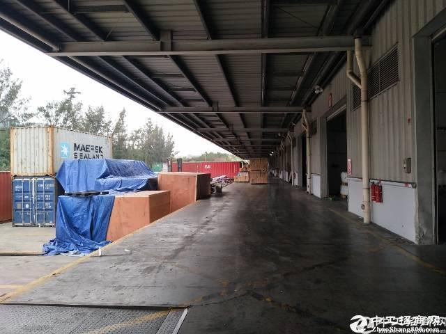 蛇口赤湾工业区新出厂房3600平超大空地一楼物流仓库