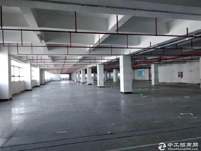 西丽白芒关口智能产业园300-5000平方厂房仓库出租