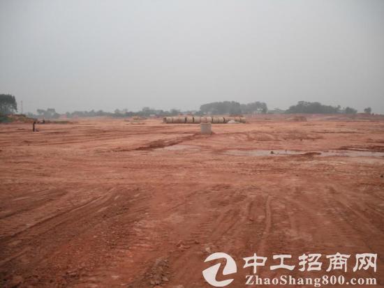 中堂镇国有土地,20亩起售,一手带土地证