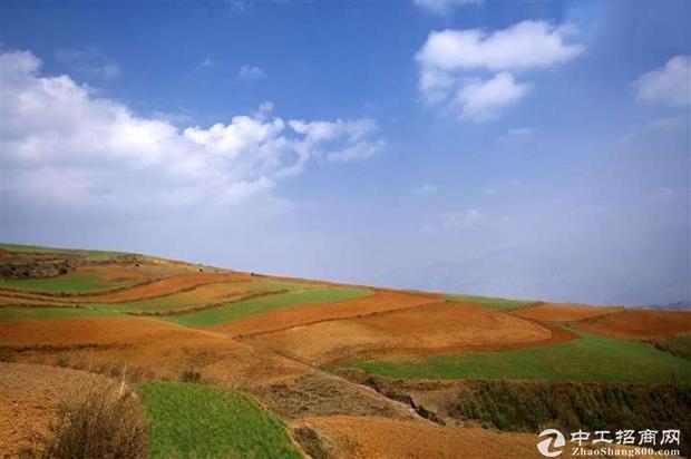靠近杭州企业转移国有工业土地出售