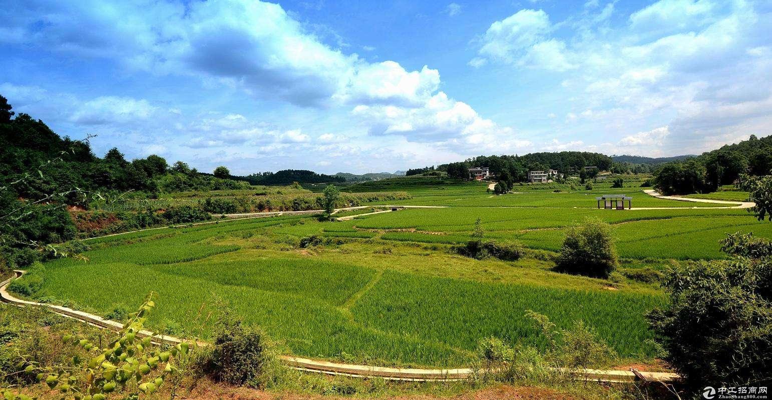 """杭州""""半小时""""经济圈 德清县土地出售55亩"""