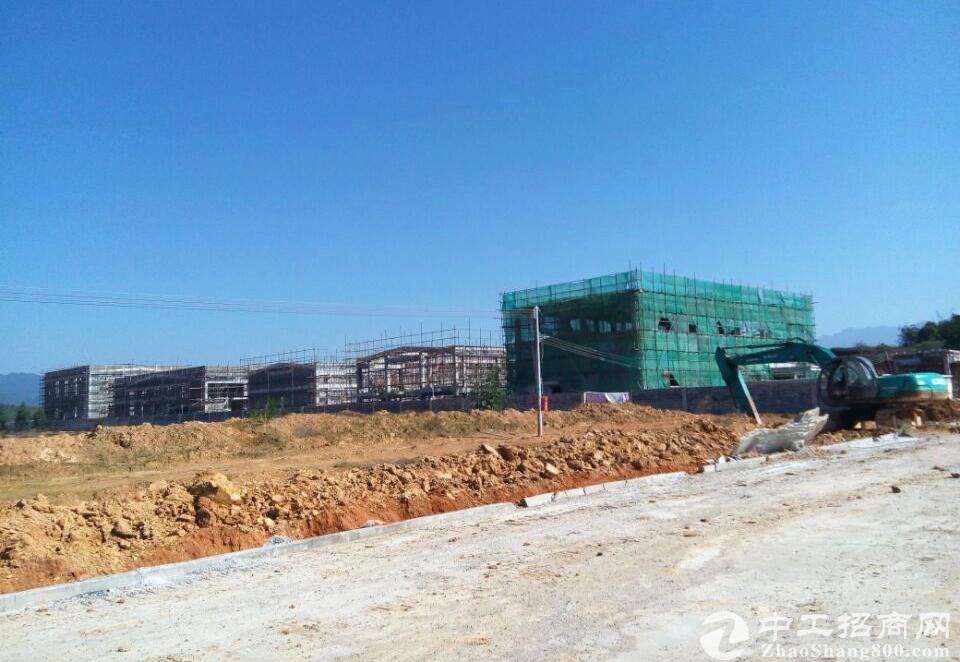 浙江桐庐320国道旁边50亩工业土地出售