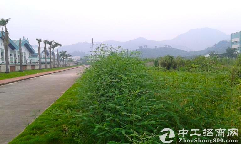 浙江省湖州市70亩土地出售 可订建厂房