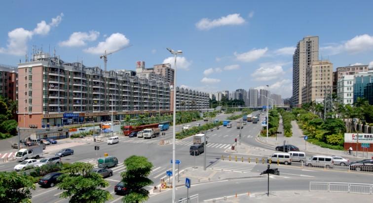 新区加快绿化建设 将保护生态环境视为重要民生问题之一