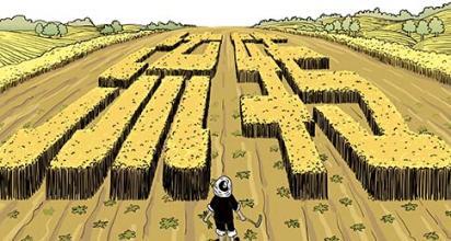 土地流转:一亩地收多少租金合适?