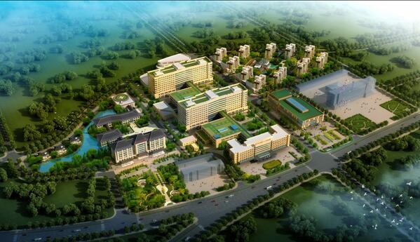 葫芦岛市龙港区招商引资 强力推进项目建设