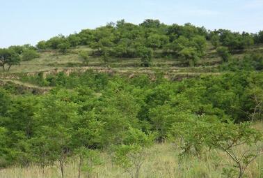 土地管理法要修改了 农村土地有望与国有土地同等同价入市