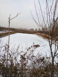 辽宁沈阳沈北新区7.5亩土地转让