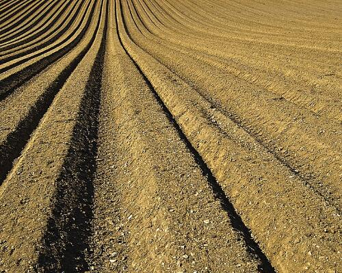 南京市首批7.8万亩土地轮作休耕(附补贴标准)