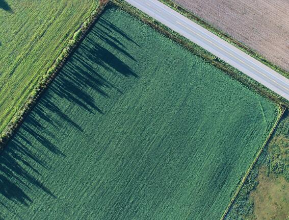 农垦国有土地直接纳入不动产登记 明年底将基本完成确权发证