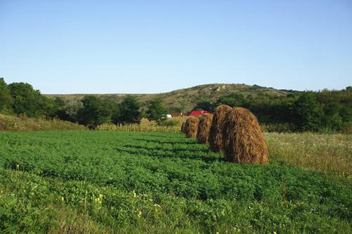 农村土地确权颁证后如何靠它赚钱?