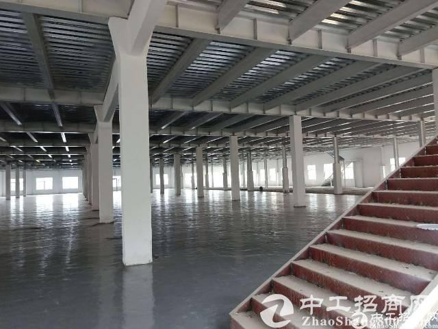 期待已久的深圳大沙河生态长廊就要来了