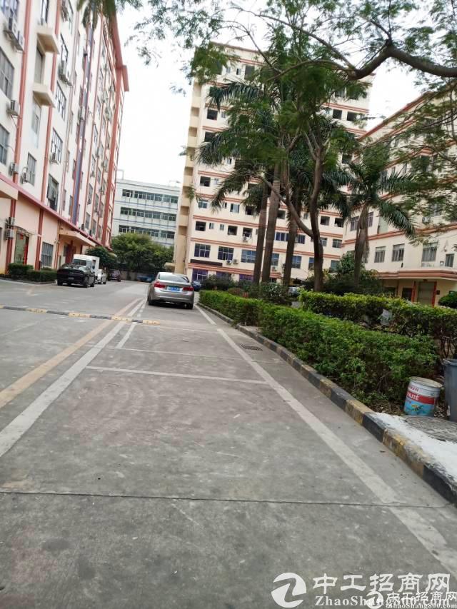 深圳:鼓励市场主体开展工改 城中村综合整治允许局部拆建