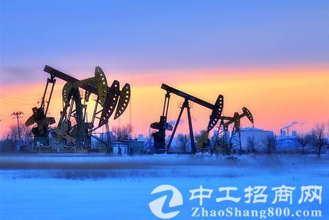 「能源产业」《2019中国能源化工产业发展报告》在沙特发布