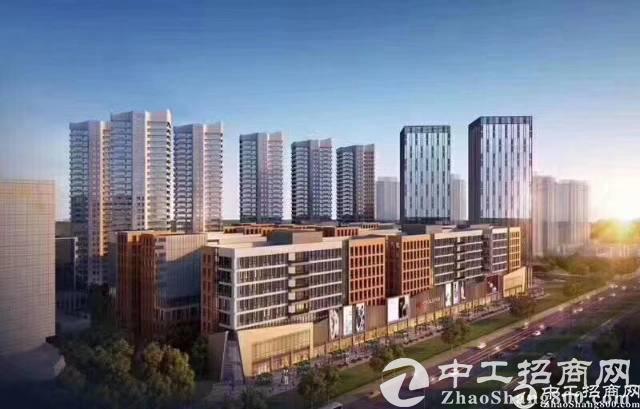 """遂宁经开区""""产业兴区""""驱动高质量发展"""
