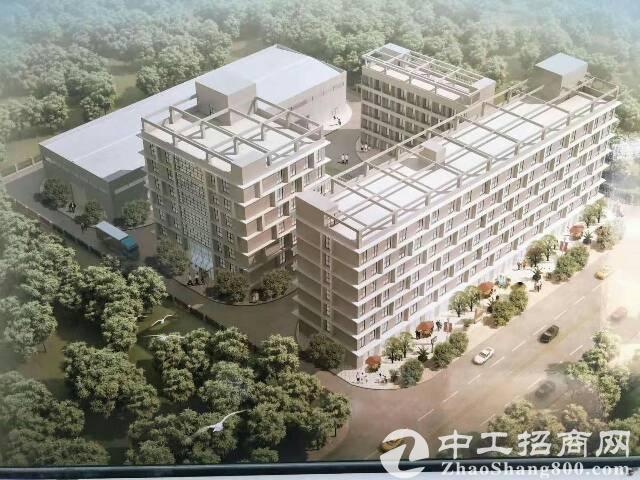 从村级工业园到现代产业社区——高质量发展的桂城故事