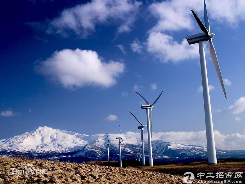 「能源产业」风能发电也会影响环境生态?TNC:走环境友好型风...