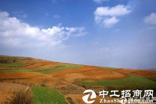 """中国土地市场持续活跃 50城""""卖地""""收入同比涨13.2%(组图)"""