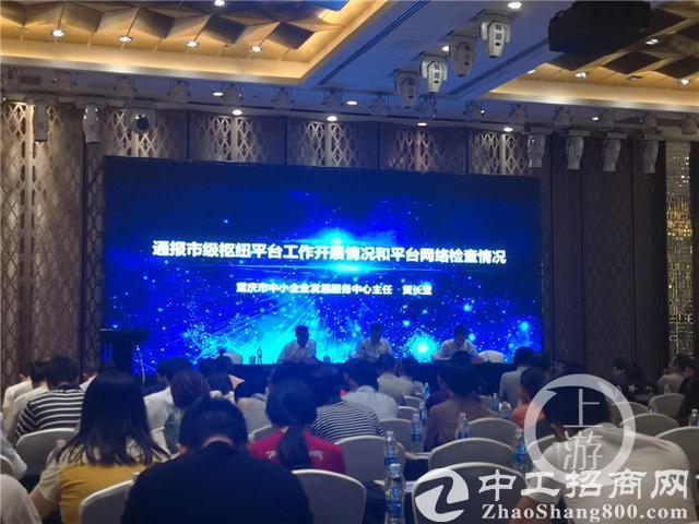 重庆上线中小企业政策大数据平台 提供精准定制服务