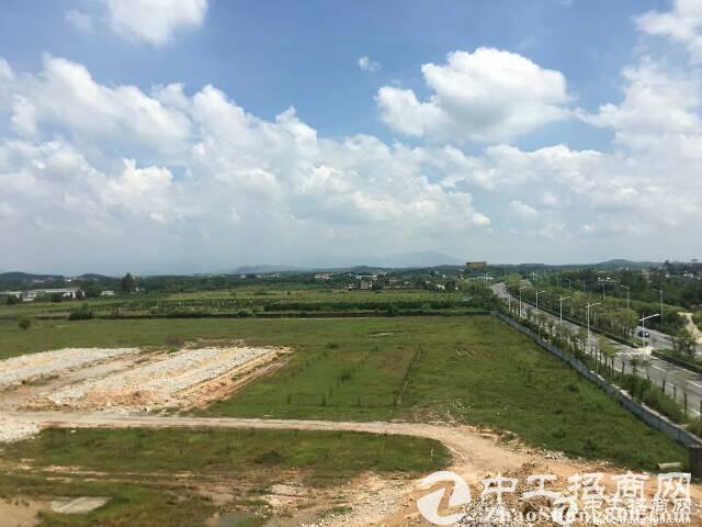 """上海出让首批产业用地""""标准地""""共9幅拟引入生物医药新材料等产..."""