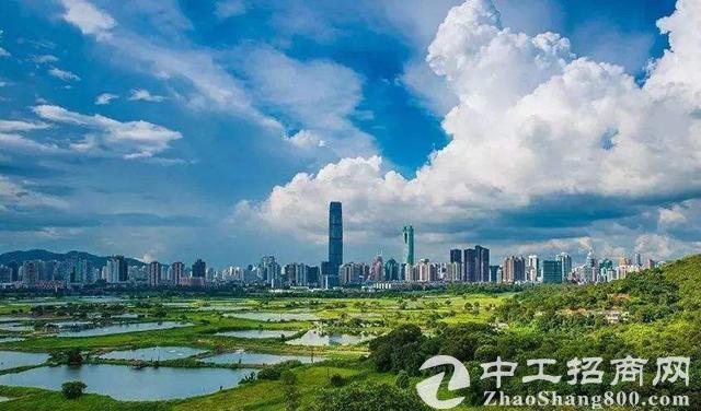 深圳大鹏新区:三年释放土地面积141万平方米