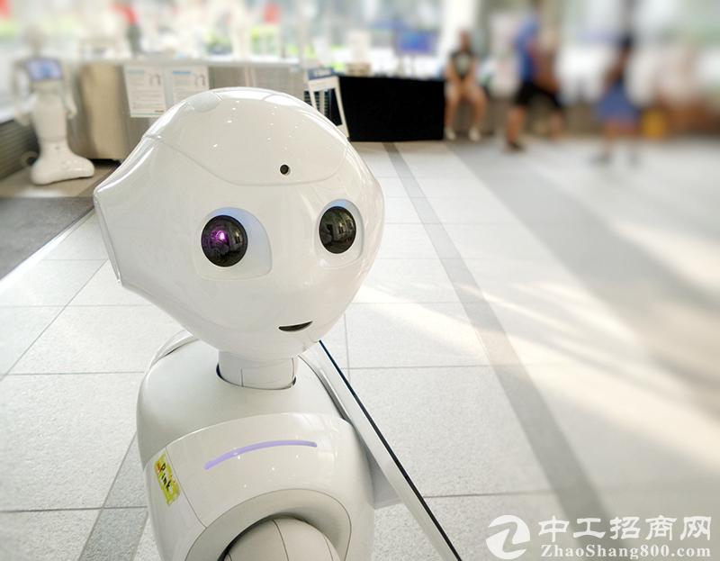 """斗山机器人:""""新物种""""小块头有大智慧"""